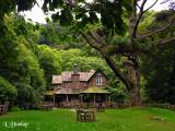 Watersmeet Tea House (Formerly Hunting Lodge)