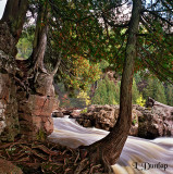 Gooseberry River Floodwaters