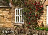 Coberley Home