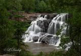 23 - Gooseberry: Upper Falls, Summer