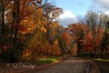 Lake Superior South Shore Road