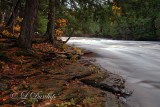Banks of the Presque Isle River