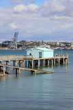 Stanley Point, North Shore, AUCKLAND