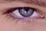 Eye_crop.jpg
