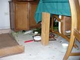 dishes broken on the floor