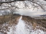 143, Marshlands Conservancy, Rye