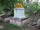 Other Thiruvarasus of Srirangam ranganarayana jeeyar peetadipadis.JPG