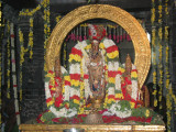 varadan in sikathadai (parivettai alankaram is still for devotees).JPG