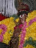 Sri perumbuthur-Guru Pushyam - emberumanar purappadu.jpg