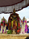 Parthasarathi Closeup.jpg