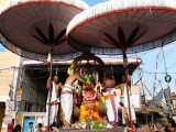 sarvadhari-panguni