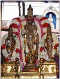 6th day -Parthasarathi closeup shot in punniya kOti vimAnam.jpg