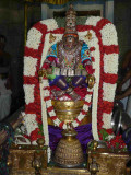 5th day night - patthi ulAthal - yOga narasimhar thirukOlam - close up shot2.jpg