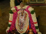 VisadavakSigamani ready for morning purappadu.JPG