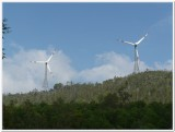 05-Windmills in the backdrop.JPG