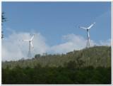 05-Windmills in the backdrop.JPG