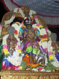 Sri Parthasarathy_Rajagopalan Thirukolam4_8th day.jpg