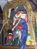 Sri Parthasarathy_Rajagopalan Thirukolam8_8th day.jpg