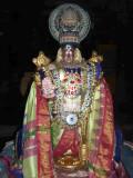 Vijayaragavan  Ekantha Sevai1_3rd Day Evaning.jpg
