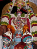 3rd day evening - Hanumantha vahanam.JPG