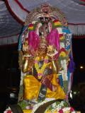 Panguni Uttram  Sri Ranganathar in kannAdi Garudan-1.JPG