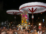 Panguni Uttram  Sri Ranganathar in kannAdi Garudan-4.JPG