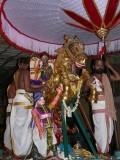 13 Parthasarathi in kudirai vahanam.JPG