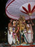 15 Parthasarathi in kudirai vahanam.JPG