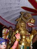 16 Parthasarathi in kudirai vahanam.JPG