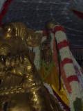 Sri PerarulalaN_Yali Vahanam1.jpg