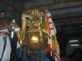 Sri PerarulalaN_Yali Vahanam4.jpg