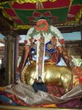 Venu Gopalan Thirukolam_Pin Sevai2.jpg