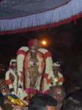 Sri Perarulalan_Thiruther uthsavam3.jpg