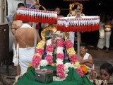 24-Partha Utsavam.Day 1.Morning.Kutty Perumal 02.jpg