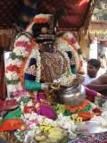 01-Parthasarathy Utsavam.Day 08.Vennai Thaazhi Kannan.jpg