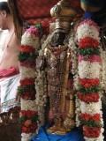 10-Parthasarathy Utsavam.Day 09.After Porvai Kalayal with new Malai.jpg
