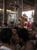 13-Parthasarathy Utsavam.Day 09.Mattai Adi Utsavam.jpg