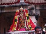 sri_varaha_jayanthi