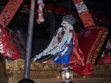 sarvadhAri Thirunakshathram