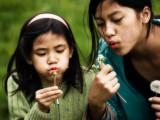 Dandelions and kids