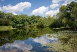 Jasper Pulaski Fish & WildLlife Area