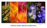 Rainbow Floral Montage