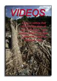 Flood Video Links