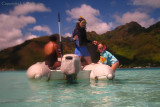 Snorkeling in the lagoon, Moorea