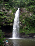 Waterfall on Taveuni