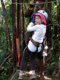 Tree zipping in the jungle, Viti Levu