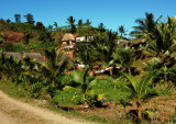 Traditional village, Viti Levu