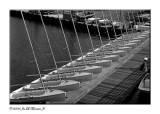 Boat-Line