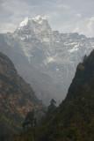 Kusum Kangguru (6367m, 20,889ft), from Tharo Kosi