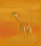 Giraffe by Anita Stanhope